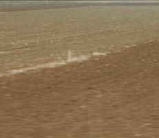 """Foto """"Farbfeld #4"""" von Zuckerwein Fotografie. Das Werk zeigt den einen Ausschnitt eines Ackers im tuerkischen Hochland im Fruehling, in Fahrt aufgenommen. Mehr siehe http://zuckerwein.com/"""